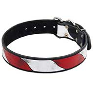 American Pride Leather Bull Terrier Collar for Daily Walks
