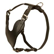 Heavy Duty Adjustable Leather Bull Terrier Harness for Training