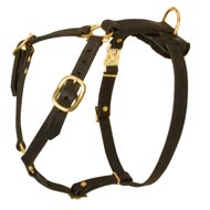 Adjustable Tracking Leather Bull Terrier Harness