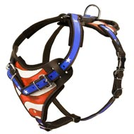 Hand-Painted Soft Padded Leather Bull Terrier Harness