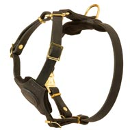 Adjustable Leather Bull Terrier Harness for Training Puppies