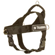 Lightweight Nylon Bull Terrier Harness for Training