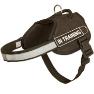 All-Weather Training Nylon Bull Terrier Harness for Police Work