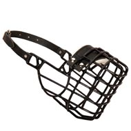 Rubber Covered Wire Cage Bull Terrier Muzzle for Winter