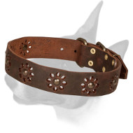 'Spring Mood' Bull Terrier Leather Dog Collar for Walking