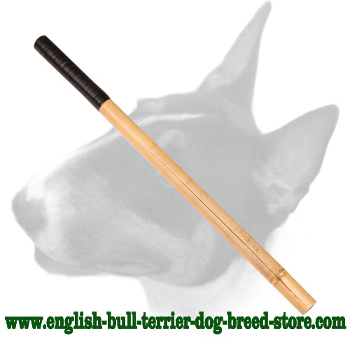 Solid Bamboo stick for training English Bull Terrier