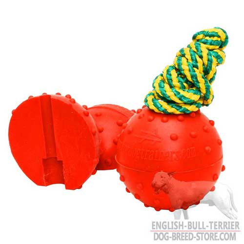 Rubber Bull Terrier Ball with Multicolored Rope