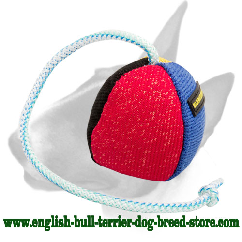 French Linen Bull Terrier Bite Toy with Dog-Friendly Filler