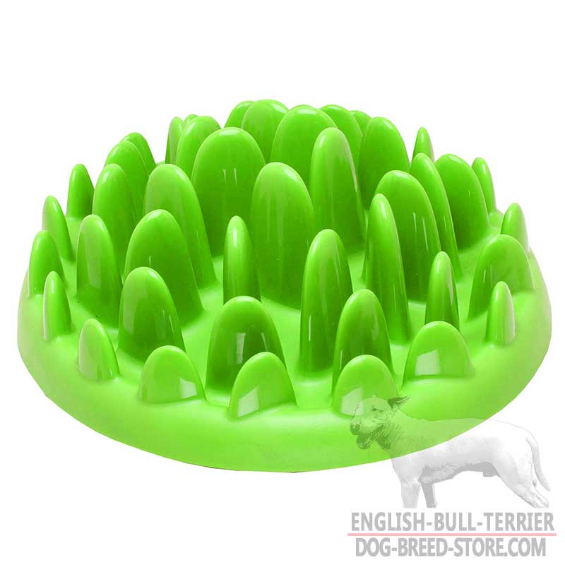 dog slow save small feed smdunodogbo feeder bowl durapet