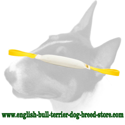 English Bull Terrier bite tug  made of fire hose for training puppies