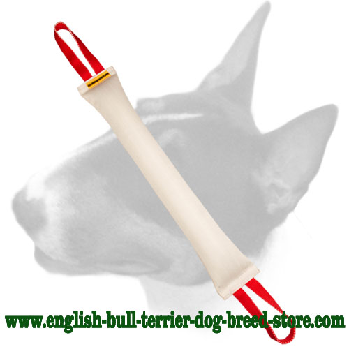 Huge fire hose bite tug for training adult English Bull Terrier dogs