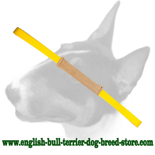 English Bull Terrier leather bite tug with 2 nylon handles for training puppies