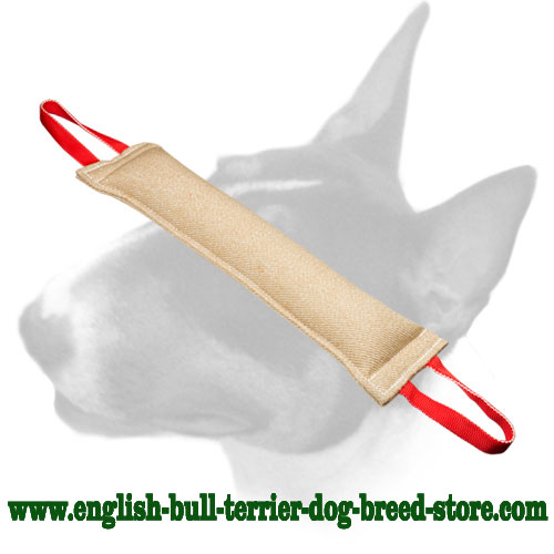 English Bull Terrier reliable natural Jute bite tug for training