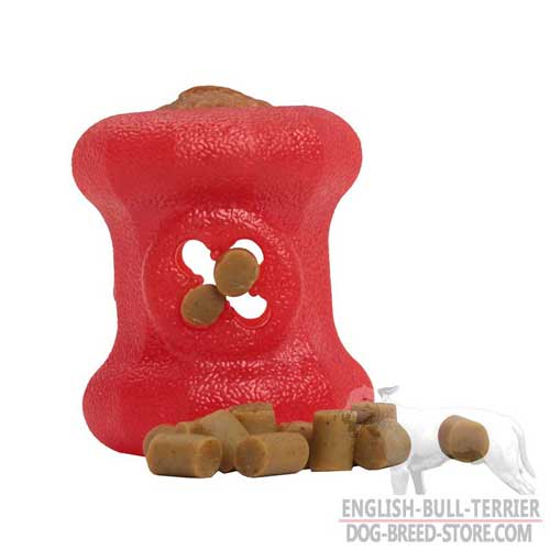 Bright Special Rubber Toy for English Bull Terrier