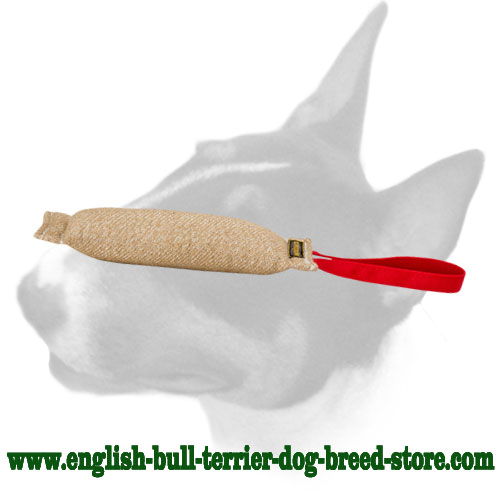 English Bull Terrier bite tug with comfortable shape for training puppies