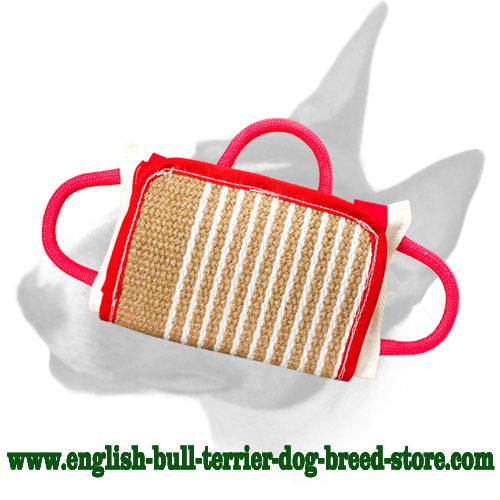 English Bull Terrier bite pillow for efficient bite training