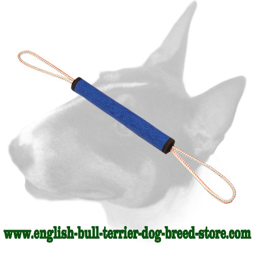 French linen roll for English Bull Terrier puppy bite training