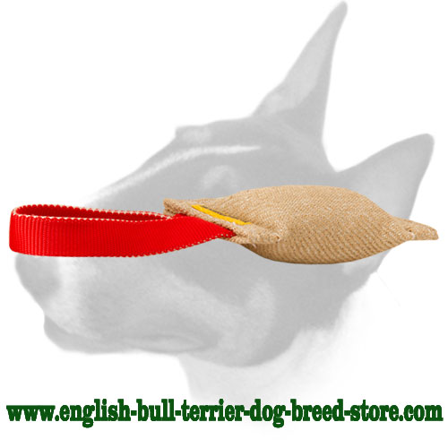 English Bull Terrier bite tug made of Jute for training puppies