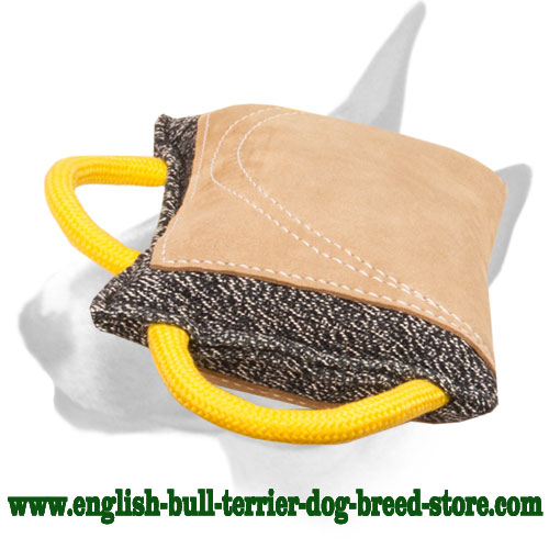 English Bull Terrier bite pad with leather area for training