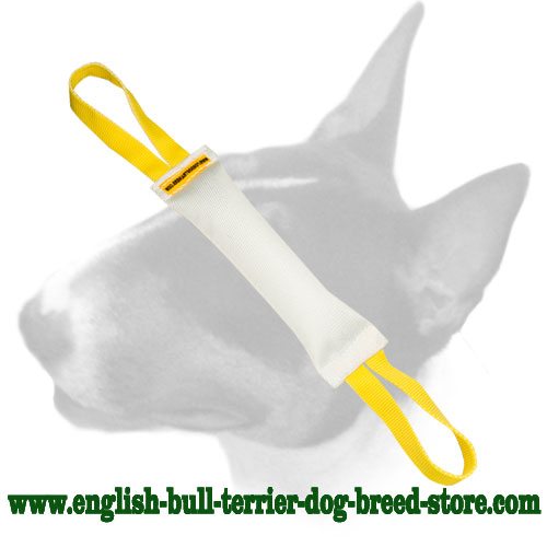 Bull Terrier fire hose bite tug with handles for training puppies