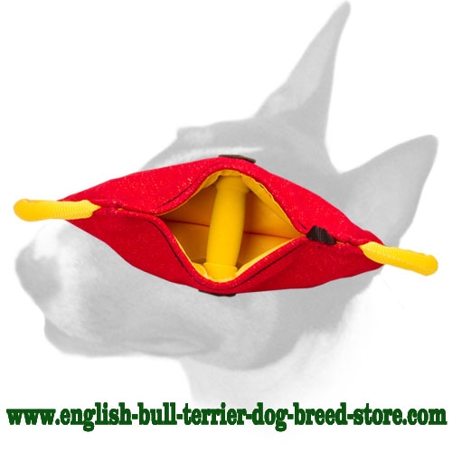 English Bull Terrier strong bite builder for puppies