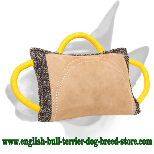 French linen bite pad for training English Bull Terrier breed