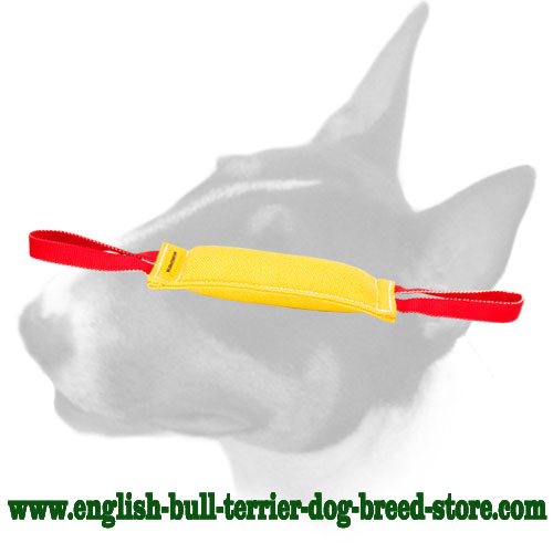 Strong puppy bite tug with 2 handles for training English Bull Terrier