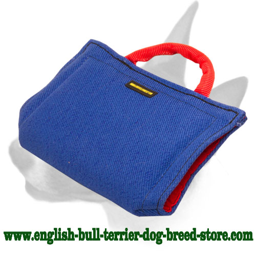 English Bull Terrier puppy dog sleeve