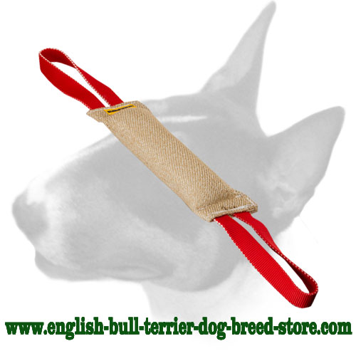 English Bull Terrier dog-friendly Jute bite tug with 2 durable handles for training puppies