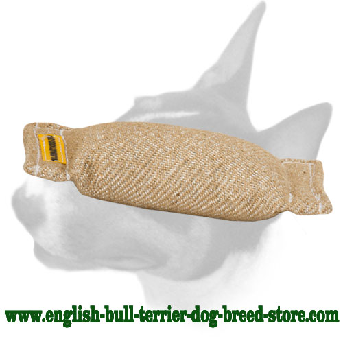 English Bull Terrier dog-friendly Jute bite tug without handles for training puppies