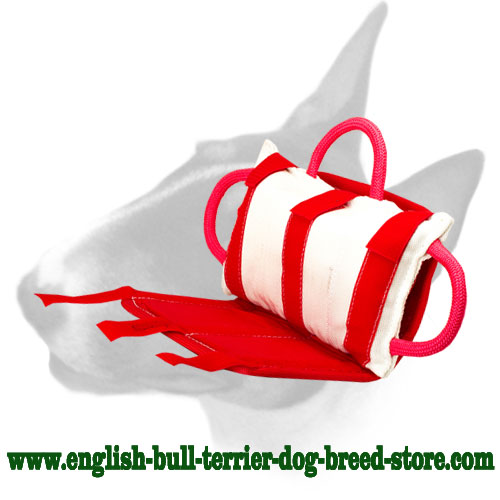 Dog bite pillow with handles for training English Bull Terrier