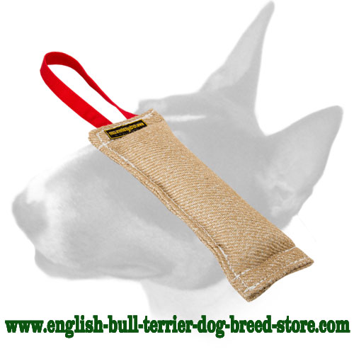 English Bull Terrier dog-friendly Jute bite tug for training puppies