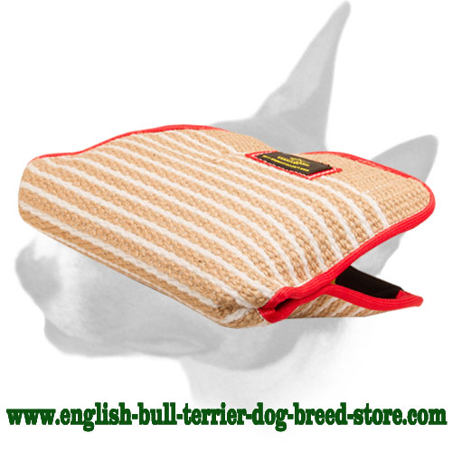 English Bull Terrier Jute bite builder sleeve for training young dogs