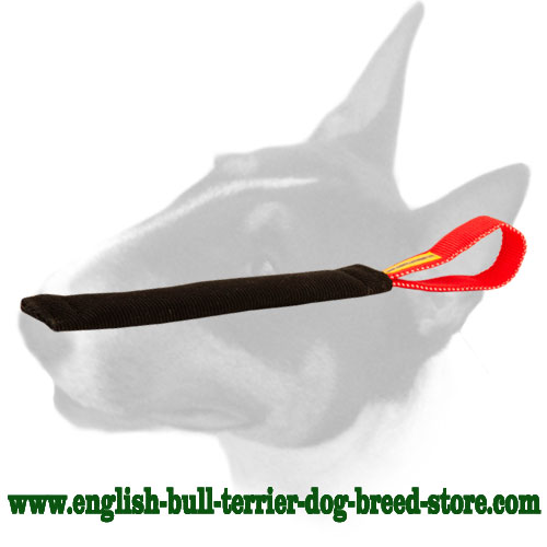 English Bull Terrier puppy bite tug made of French linen for training