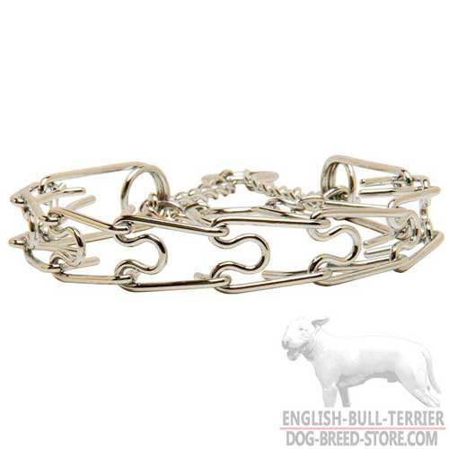 Chrome Plated Dog Collar for English Bull Terrier