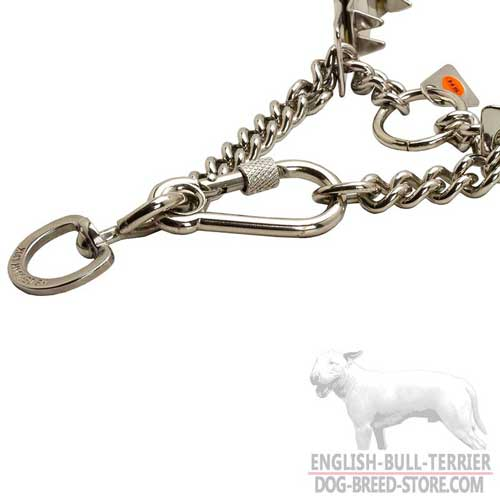 Steel Pinch Collar for English Bull Terrier