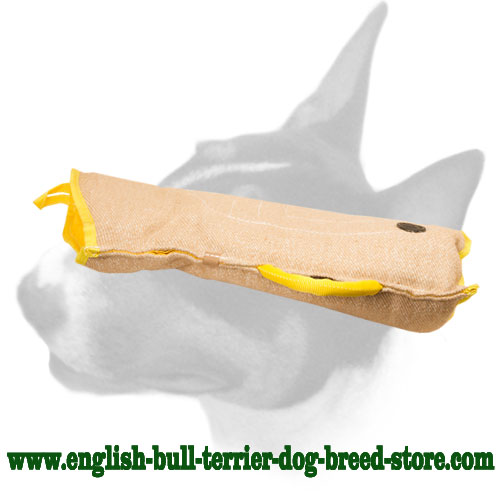 Strong Jute puppy sleeve for English Bull Terrier
