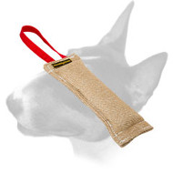 English Bull Terrier Jute Puppy Bite Tug with Durable Handle