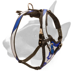 English Bull Terrier Israeli Flag Painted Leather Dog Harness