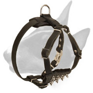 Bull Terrier Solid Spiked Chest Leather Dog Harness for Puppies