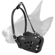 English Bull Terrier Military Leather Dog Muzzle
