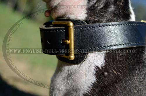 Rust Proof Brass Buckle and Fur Protection Plate of Leather Dog Collar
