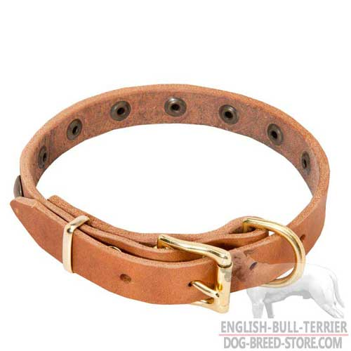 Brass Buckle And D-Ring On Light Weight Leather Dog Collar