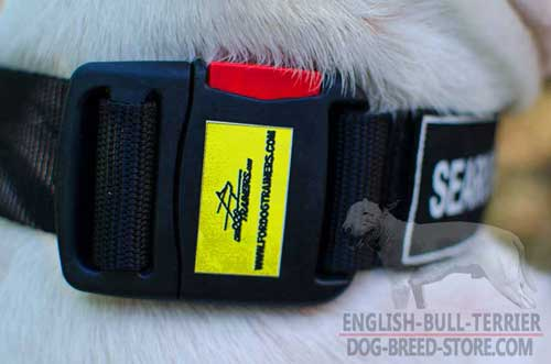 Reliable Buckle On Training Nylon Dog Collar