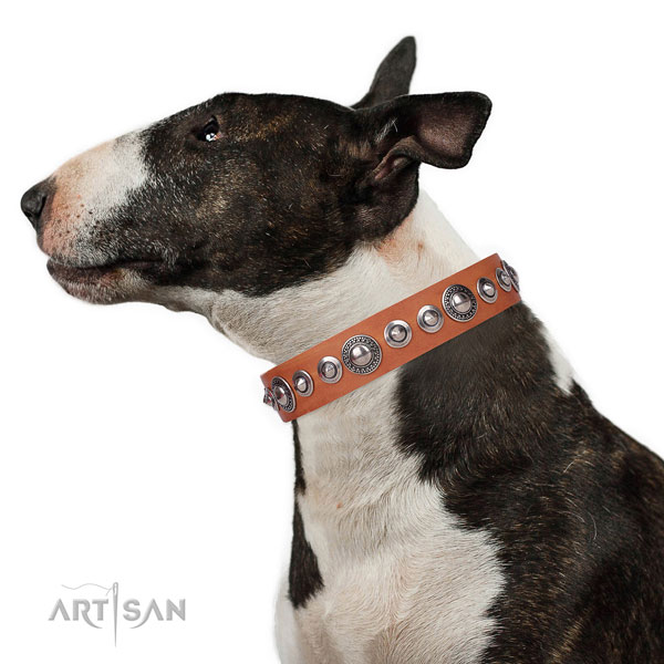 Fashionable decorated natural leather dog collar for daily use