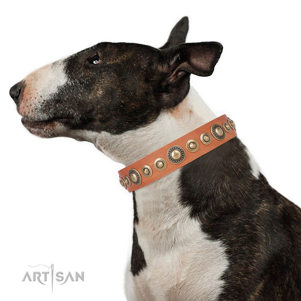 Corrosion resistant buckle and D-ring on genuine leather dog collar for everyday walking