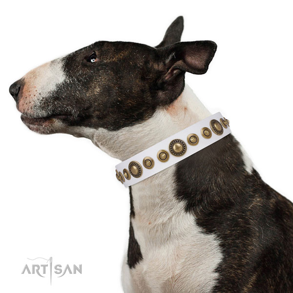Rust resistant buckle and D-ring on natural leather dog collar for everyday walking