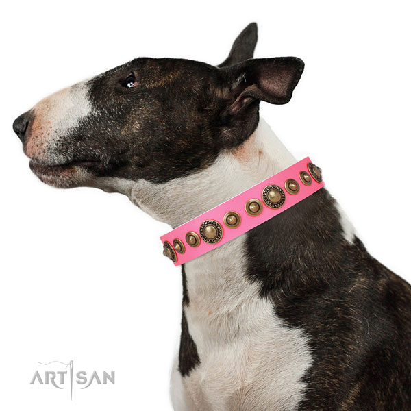 Corrosion resistant buckle and D-ring on natural leather dog collar for walking in style