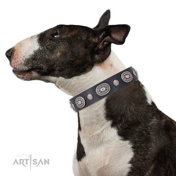 Strong buckle and D-ring on genuine leather dog collar for walking in style