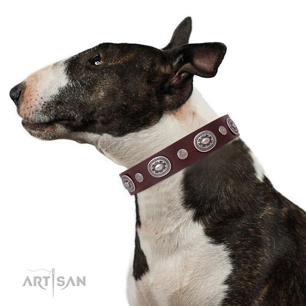 Rust resistant buckle and D-ring on natural leather dog collar for daily walking